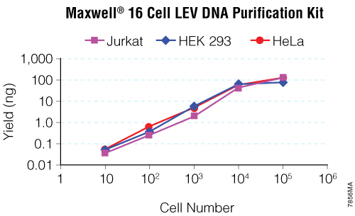 DNA isolated from 10, 100, 1,000, 10,000 and 100,000 cells suspended in PBS and culture medium using the Maxwell 16 Cell LEV DNA Purification Kit.
